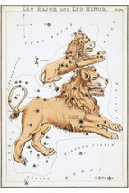 Leo Constellation; Astrology Star Chart; Zodiac Engraving by Sidney Hall - £21.45 GBP+