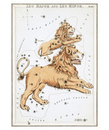 Leo Constellation; Astrology Star Chart; Zodiac Engraving by Sidney Hall - $26.72+