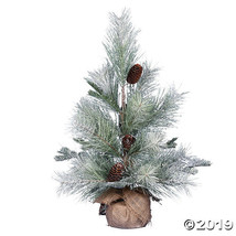 "Vickerman 24"" Frosted Ansell Pine Tree - Unlit - $50.25"