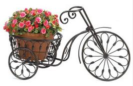 Tricycleplantstd1 thumb200