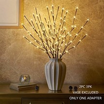 """Vanthylit Set of 2 3PK 30"""" Brown Lighted Twig Stakes 120 Warm White LED ... - $40.27"""