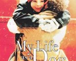 My Life as a Dog, DVD