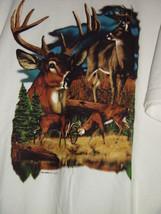Deer With Bucks Fighting White T-Shirt Size Med - $17.00