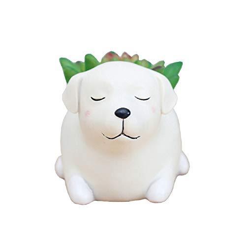 Youfui Cute Dog Flowerpot Resin Succulent Planter Desk Mini Ornament Labrador