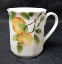 Royal Doulton Coffee Mug Citrus Grove Fine China Cup, TC 1192, England 1994 - $14.50