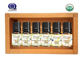 Organic Essential Oil Set 6 x 5 ML TeaTree Frankincense Lemon Rosemary P... - €25,26 EUR