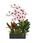 Dendrobium and Bromeliad Arrangement - $70.80
