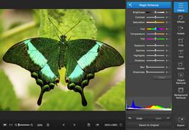 Movavi Photo Editor Easy Photo Editing , Photo Effects , BMP GIF JPEG for MAC - $25.60