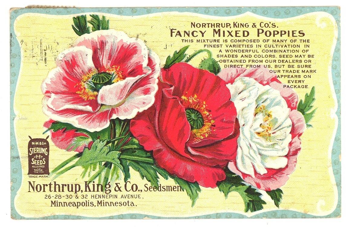 Poppiespcbonanzle