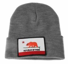 Team Phun Gray Republic Of Phun California Bear Surfing Fold Cuff Knit Beanie NW image 2
