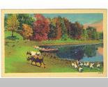 Postcard16 thumb155 crop