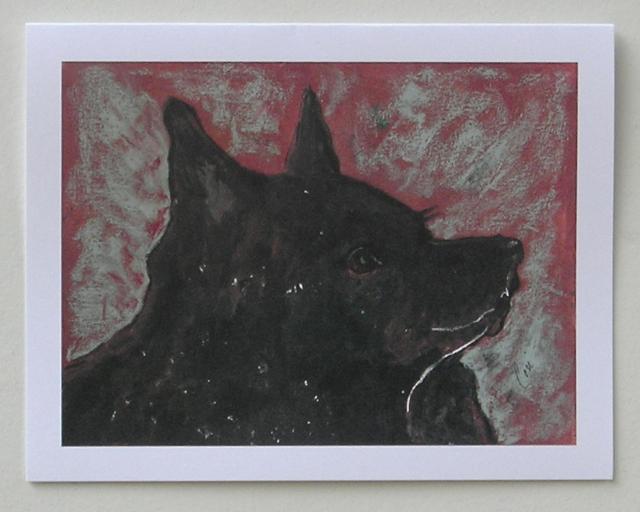 Schipperke dog art note cards by cori solomon