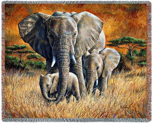 70x53 ELEPHANT Tropical Jungle Tapestry Throw Blanket