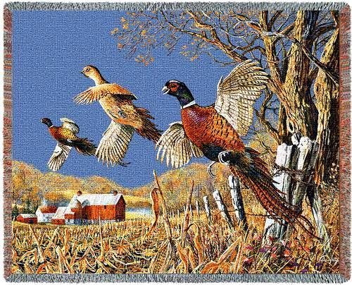 70x53 PHEASANT Wildlife Bird Tapestry Throw Blanket