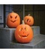 Bulk Organic Pumpkin Seeds (1 Lb) - $18.77