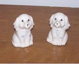 Saltpeper whitedogs thumb155 crop