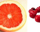 Grapefruit cranberry thumb155 crop