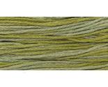 Scuppernong thumb155 crop