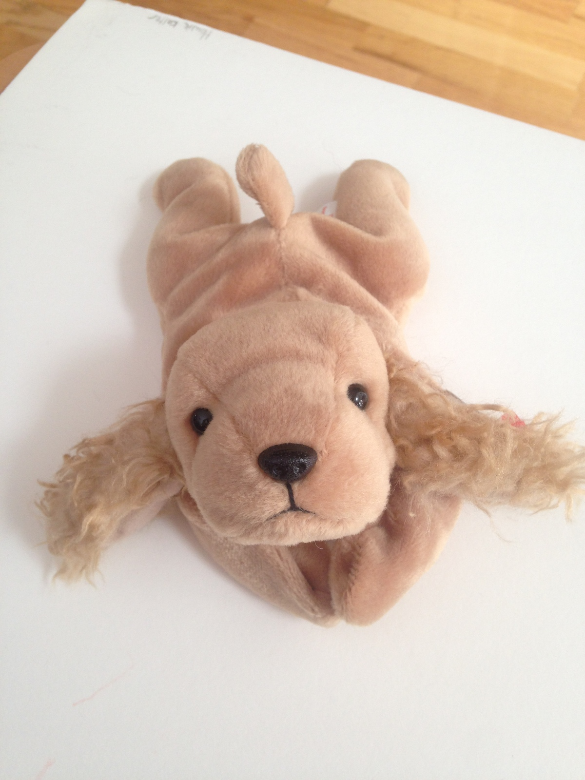 78b9902ac18 Spunky Beanie Baby Retired 1997 and 50 similar items. Img 6215