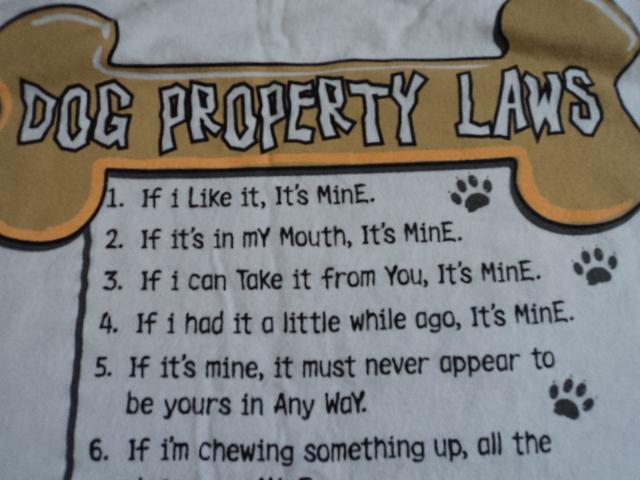 Gilban White T-Shirt Dog Property Laws Pet Animal Size M