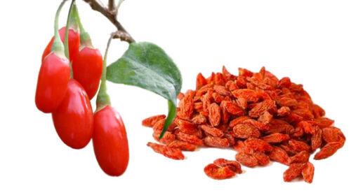 100 Goji Berry Seeds 2019 (All Non-Gmo Heirloom Vegetable Seeds!) - $7.12