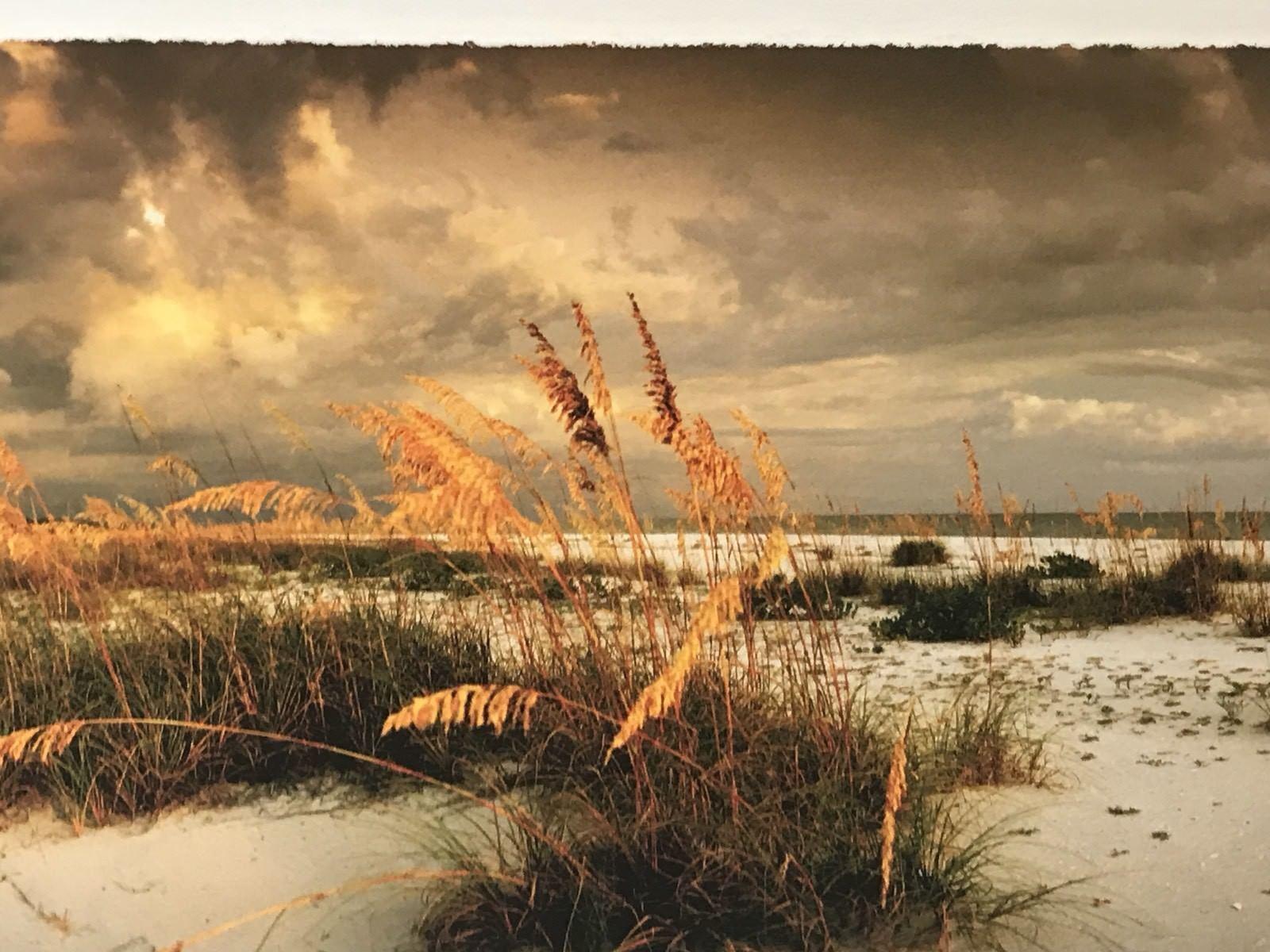 BEACH PHOTO ART PRINT - Doug Cavanah Dunes Ocean Photograph Signed Matted