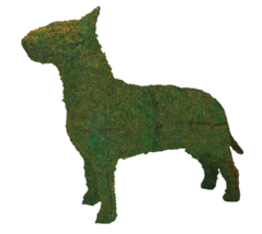 "Bull Terrier 33"" Topiary Sculpture - Wire Frame or Moss Filled - $157.62+"