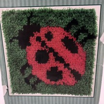 Caron Latch Hook Kit Ladybug 12x12 Natura P542 Made in USA Hobby Craft - $19.79