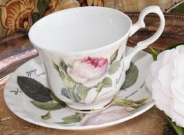 Roy Kirkham Redoute Cabbage Rose Fine Bone China Tea Cup Saucer England ... - $34.49