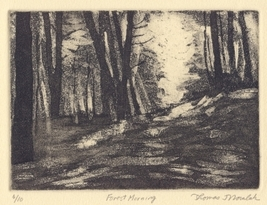FOREST MORNING limited edition etching - $29.99