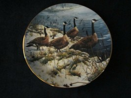 CANADA GOOSE collector plate JOHN SEEREY-LESTER Geese AMONG THE CATTAILS - $45.00