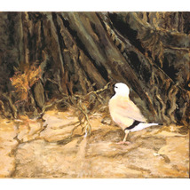 Yellow (An Original Painting of the Black-Throated Finch) - $400.00