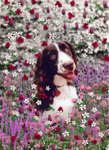Lady in flowers 600