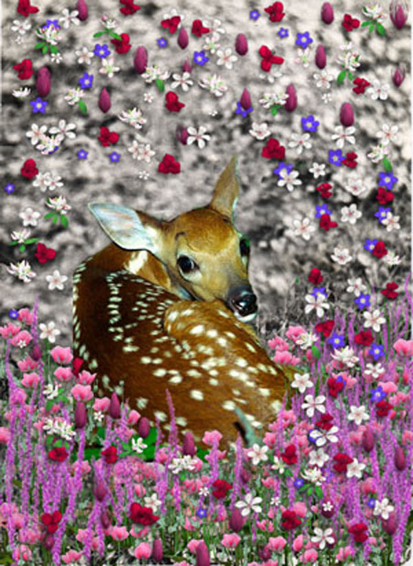 Bambi in Fllowers II - Art Card, ACEO