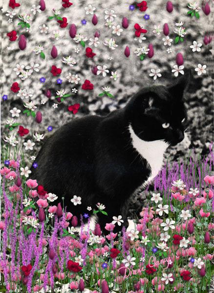 Freckles in flowers ii 600
