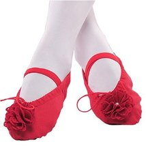 Dance Class Ballet Shoes/Canva Dance Shoes for Pretty Girl (19CM Length) Red