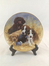 Franklin Mint ASPCA Puppy Pause Collector Plate Dogs Puppy Outdoors Hunting - $14.01