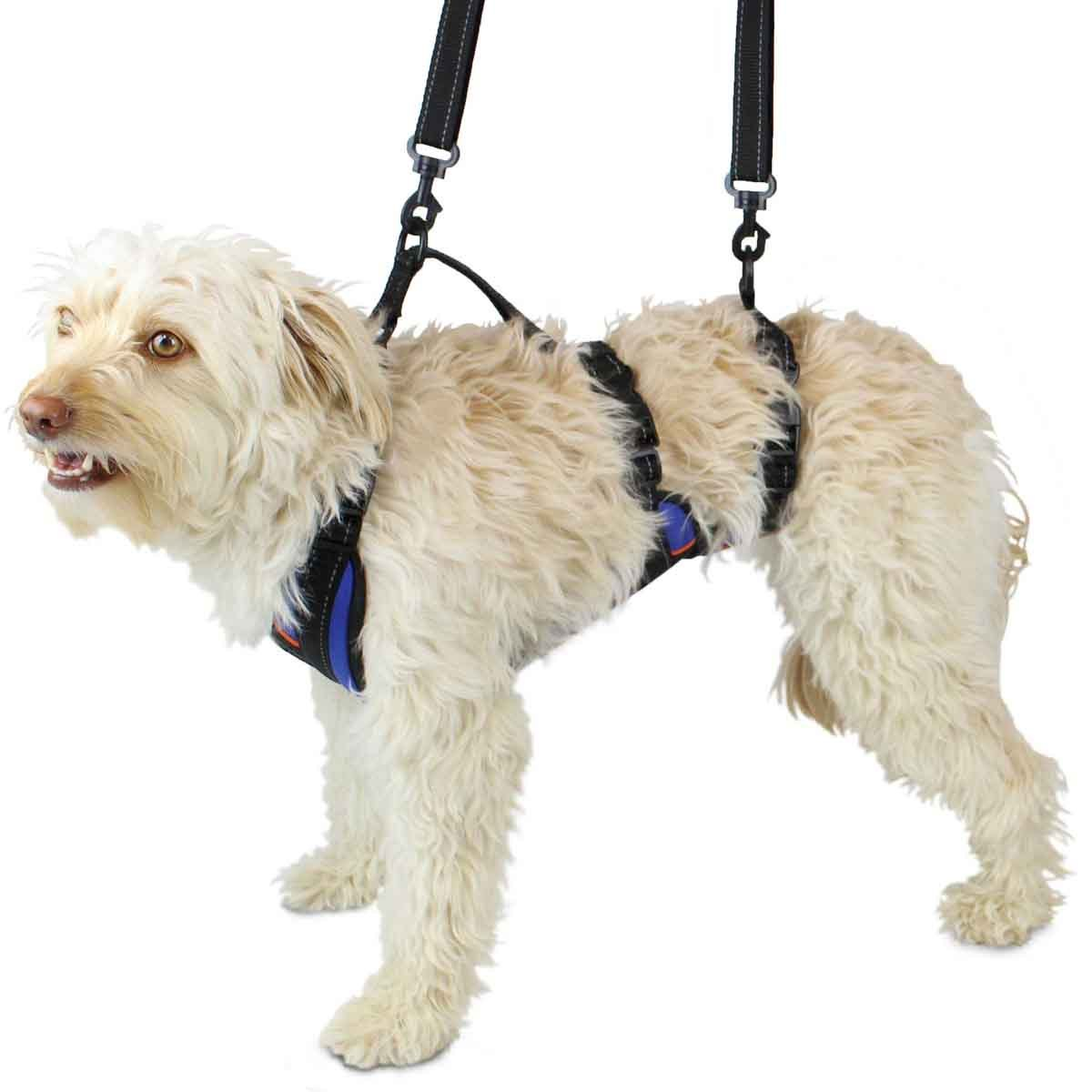 Primary image for Lift-n-Step Dog Harness for Full Body Support | Helps Dogs with Arthritis, Senio