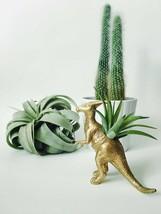 Planter Air Plant Home Desk Decor Kids Room Dinosaur Indoor Terrarium De... - $34.00