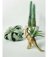 Planter Air Plant Home Desk Decor Succulent Dinosaur Indoor Terrarium De... - $34.00