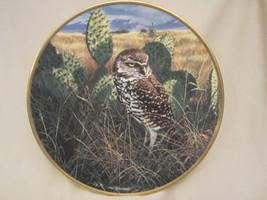 PRAIRIE SUNDOWN collector plate BURROWING OWL Seerey-Lester NOBLE OWLS - $29.99