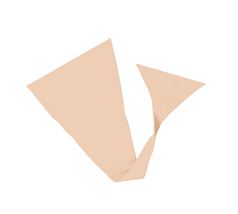 Envy strapless panty nude cropped thumb200