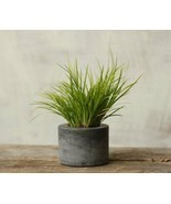 Little Concrete Planter Flower Pot Handmade Home & Garden Decor Natural Gray - $19.99