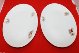 Vintage Fukagawa Arita Set of 2 Handpainted Oval Dish Plate 904 Pine Cone - $53.64