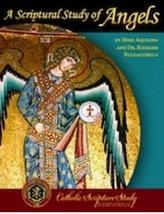 A Scriptural Study of Angels (DVD Set)
