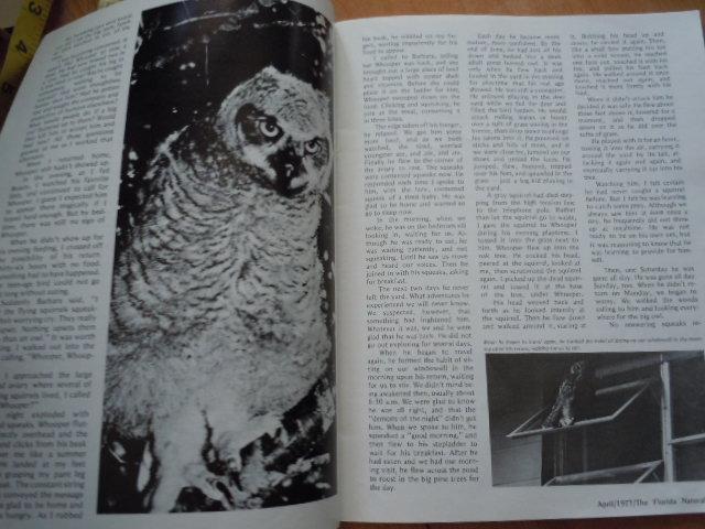 Vintage The Florida Naturalist  Magazine April 1977