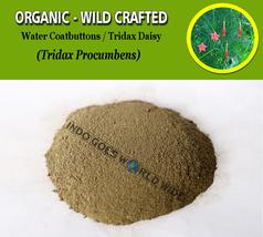 POWDER Water Coatbuttons Tridax Daisy Tridax Procumbens Organic Wild Cra... - $7.85+