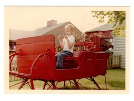 Red Antique Sleigh Horse Carriage Little Boy Vintage 1970's Color Photog... - $12.99