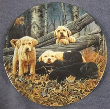 Sweet Dreams Collector Plate First Dog Days Jerry Gadamus Puppies Dogs B... - $16.15