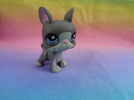Hasbro Littlest Pet Shop Grey White Boston Terrier Puppy Dog Plum Star E... - $44,34 MXN